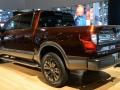 Titan at Auto Show Rear View