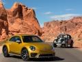 Beetle Dune History