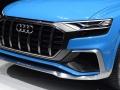 2018 Audi Q8 hood
